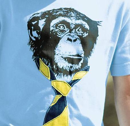mini boden monkey